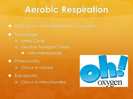 Aerobic Respiration Only occur in the presence of oxygen Two stages