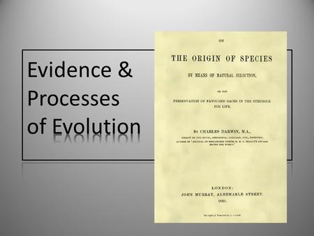 Evidence & Processes of Evolution