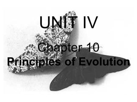 Chapter 10 Principles of Evolution