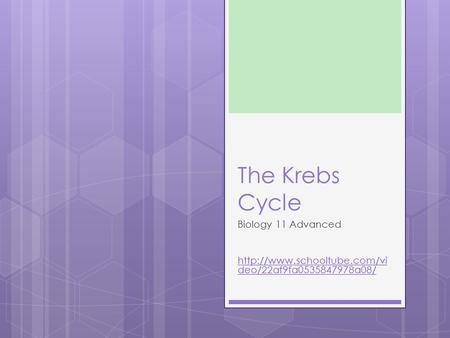 The Krebs Cycle Biology 11 Advanced