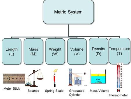 Meter Stick Balance Spring Scale Graduated Cylinder Mass/Volume