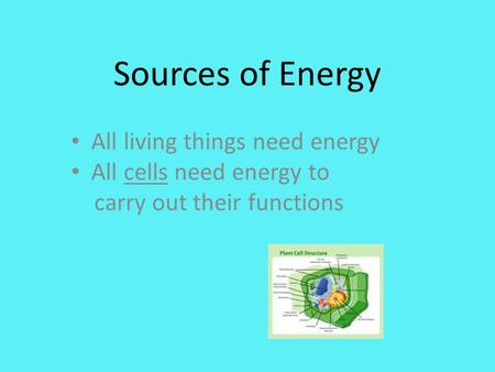 Sources of Energy All living things need energy All cells need energy to carry out their functions.