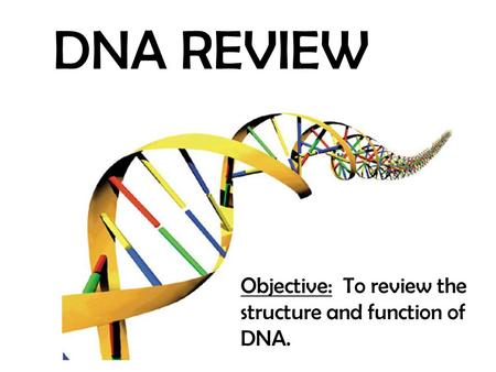 DNA REVIEW Objective: To review the structure and function of DNA.