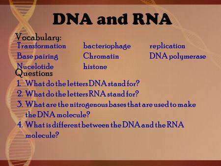 what do the letters dna stand for chapter 10 dna rna amp protein synthesis i discovery of 25510