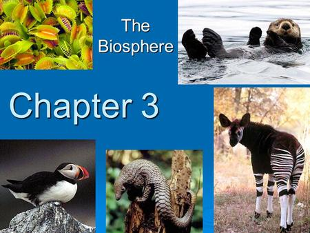 The Biosphere Chapter 3.