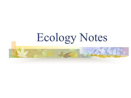 Ecology Notes Ecology: The study of the interactions among organisms and their environment.