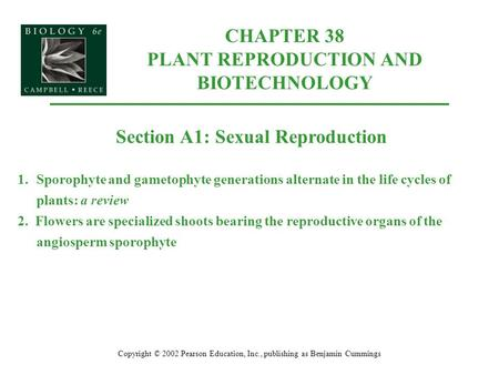 CHAPTER 38 PLANT REPRODUCTION AND BIOTECHNOLOGY Copyright © 2002 Pearson Education, Inc., publishing as Benjamin Cummings Section A1: Sexual Reproduction.