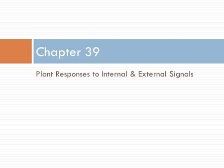 Plant Responses to Internal & External Signals Chapter 39.