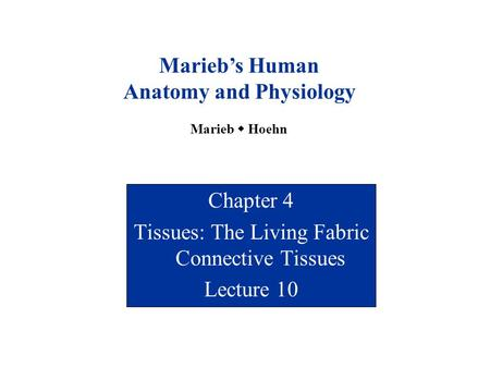 <strong>Chapter</strong> 4 Tissues: The Living Fabric Connective Tissues Lecture 10 Marieb's Human <strong>Anatomy</strong> <strong>and</strong> <strong>Physiology</strong> Marieb  Hoehn.