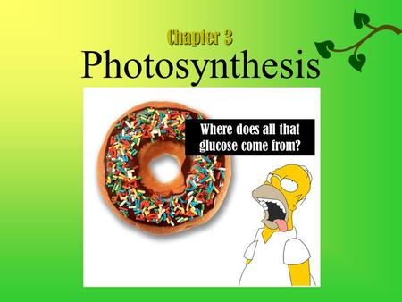 Photosynthesis Where does all that glucose come from? Chapter 3.