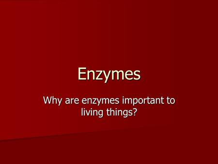 Why are enzymes important to living things?