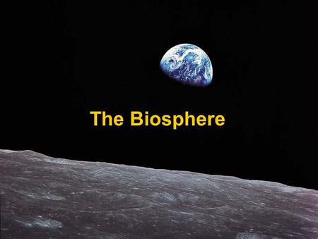 The Biosphere. What is Ecology? Ecology – the scientific study of interactions among organisms and between organisms and their environment, or surroundings.