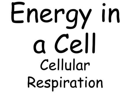 Energy in a Cell Cellular Respiration. Cellular respiration: process where mitochondria break down food molecules to produce ATP. (energy)