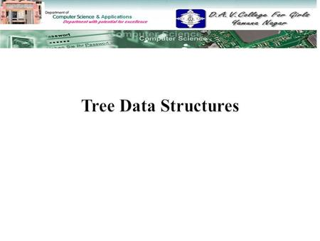 Tree Data Structures.