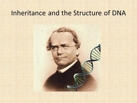 Inheritance and the Structure of DNA. Deoxyribonucleic Acid.