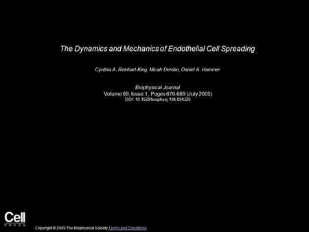 The Dynamics and Mechanics of Endothelial Cell Spreading Cynthia A. Reinhart-King, Micah Dembo, Daniel A. Hammer Biophysical Journal Volume 89, Issue 1,