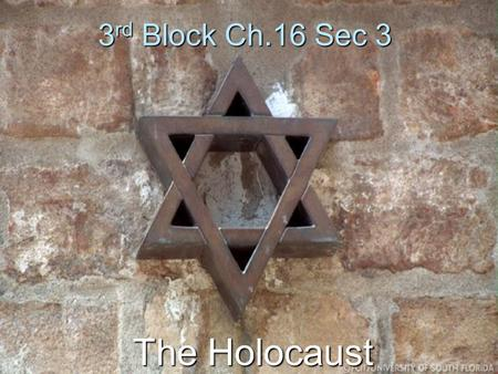 3rd Block Ch.16 Sec 3 The Holocaust. Members Brittany Jemison Michael Hatcher Asia Haygood PJ Cross John Poe.