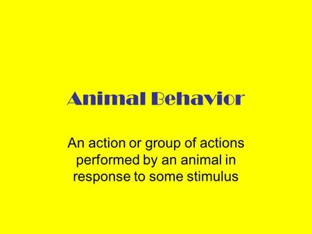 Animal Behavior An action or group of actions performed by an animal in response to some stimulus.