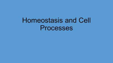 Homeostasis and Cell Processes. Homeostasis For your body to stay healthy cells must : 1.Obtain and use energy 2.Make new cells 3.Exchange material 4.Eliminate.