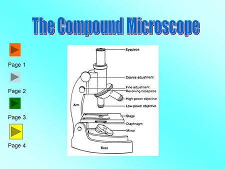 Parts of a light microscope ppt video online download page 1 page 2 page 3 page 4 aim what are the structures and ccuart Gallery