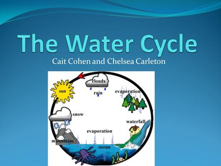 Cait Cohen and Chelsea Carleton. How Is Water Cycled in the Biosphere? Hydrologic cycle/water cycle Collects, purifies, distributes earth's supply of.