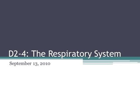 D2-4: The Respiratory System September 13, 2010. Genesis 2:7 The Lord God formed the man from the dust of the ground and breathed into his nostrils the.