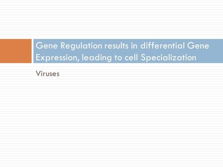 Viruses Gene Regulation results in differential Gene Expression, leading to cell Specialization.