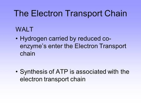 WALT Hydrogen carried by reduced co- enzyme's enter the Electron Transport chain Synthesis of ATP is associated with the electron transport chain The Electron.