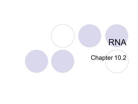 RNA Chapter 10.2. Structure of RNA Ribose- the sugar molecule of every RNA nucleotide Uracil- nitrogen-containing pyrimidine base (replaces thymine) Uracil.