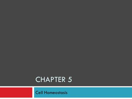 CHAPTER 5 Cell Homeostasis. Section 1: Passive Transport  Cell membranes: controls what enters and leaves the cell  Sometimes it takes energy to do.