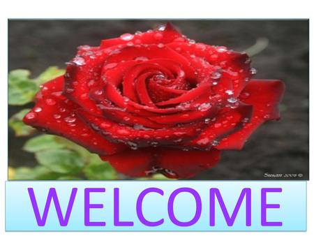 WELCOME. PRESENTED BY JOYDEV BISWAS ASSISTANT TEACHER MIRJAPUR GOVERNMENT PRIMARY SCHOOL DUMURIA, KHULNA. JOYDEV BISWAS ASSISTANT TEACHER MIRJAPUR GOVERNMENT.