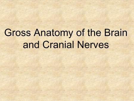 Gross Anatomy of the Brain and Cranial Nerves. Whole Brain Cerebrum Longitudinal Fissure Central Sulcus Precentral Gyrus Postcentral Gyrus.