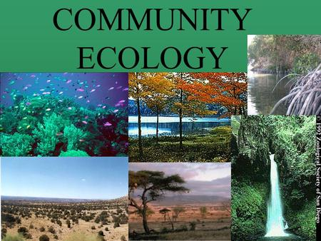 Chapter 8 Community Ecology: Structure, Species ...