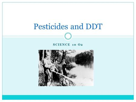 SCIENCE 10 O2 Pesticides and DDT. What are Pesticides? PESTICIDES: chemicals that are designed to kill pests. PEST: any organism that people consider.