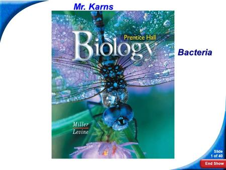 End Show Slide 1 of 40 Biology Mr. Karns Bacteria.