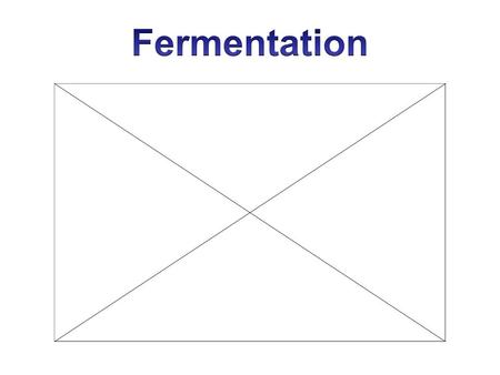 Fermentation Anaerobic: Creates ATP without oxygen Two Types 1) Lactic Acid fermentation –Performed by animals 2) Alcoholic fermentation –Performed.