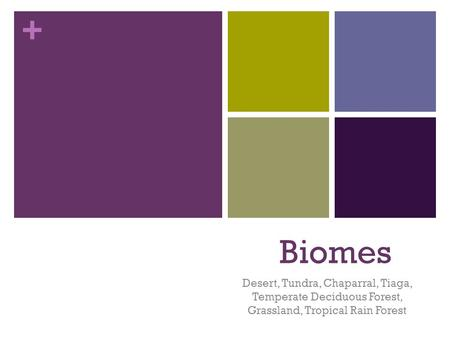 + Biomes Desert, Tundra, Chaparral, Tiaga, Temperate Deciduous Forest, Grassland, Tropical Rain Forest.