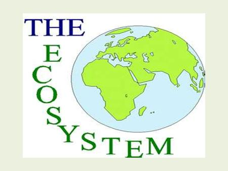 EQ: What is an ecosystem? Vocabulary Words Environment Ecosystem Population Community.