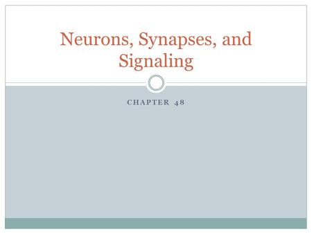 Neurons, Synapses, and Signaling