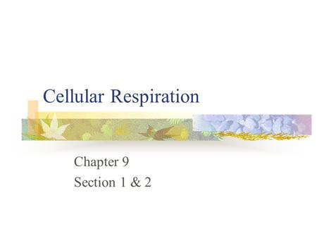 Cellular Respiration Chapter 9 Section 1 & 2. Food serves as the source of energy for cells. A Calorie – is the amount of energy needed to raise the temperature.