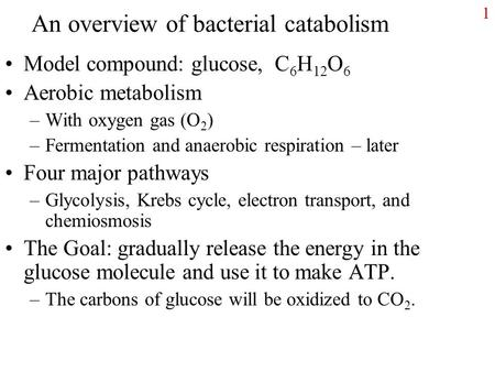 1 An overview of bacterial catabolism Model compound: glucose, C 6 H 12 O 6 <strong>Aerobic</strong> metabolism –With oxygen gas (O 2 ) –Fermentation and anaerobic respiration.