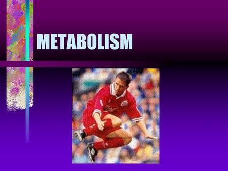 METABOLISM. The concept of metabolism Metabolism = all the chemical reactions taken place inside the living organisms Metabolic reactions produce different.