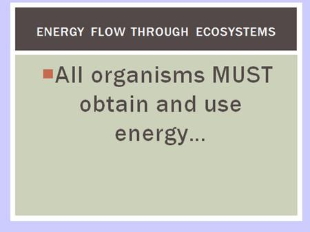 But where does the energy come from????