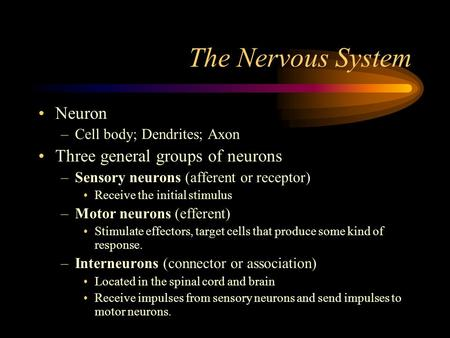 The Nervous System Neuron –Cell body; Dendrites; Axon Three general groups of neurons –Sensory neurons (afferent or receptor) Receive the initial stimulus.