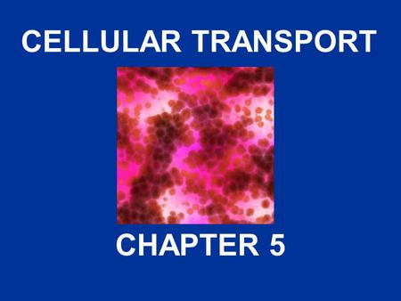 CELLULAR TRANSPORT CHAPTER 5. About Cell Membranes 1.All cells have a cell ________ 2.Functions: a.Controls what enters and exits the cell to maintain.