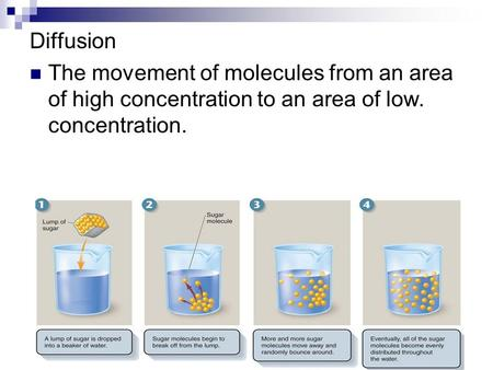 Diffusion The movement of molecules from an area of high concentration to an area of low. concentration.