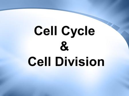 Cell Cycle & Cell Division. Cell Cycle