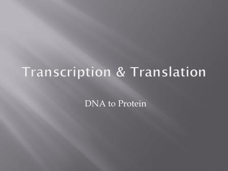 DNA to Protein Transcription & Translation.  What are these nucleotides telling us?  Sequence of nucleotides in DNA contains information to produce.
