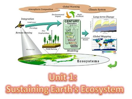 Sustaining Earth's Ecosystem