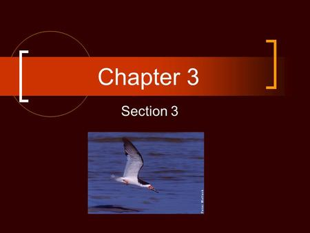 Chapter 3 Section 3.